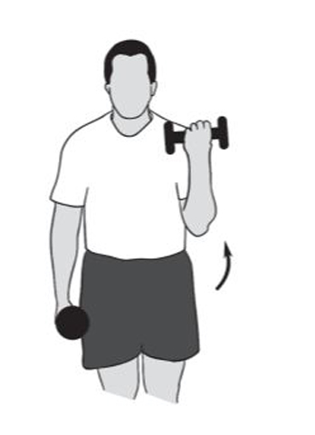 elbow flexion - shoulder recovery exercise